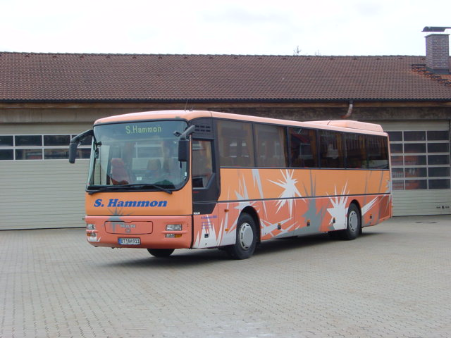 https://www.hammon-busse.de/media/reisebusse/DSC00057.JPG